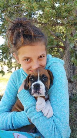 Colorado Boxer Breeders Kloud 9 Boxers Pugs Elizabeth Colorado